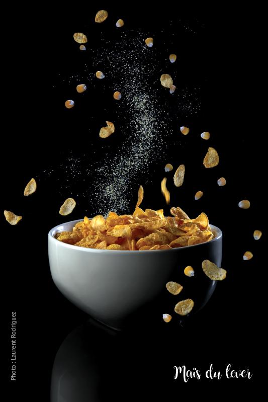 Maïs du lever